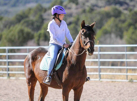 Horsemanship Classes
